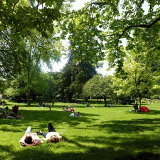 Décor pour votre tournage : jardin des Plantes