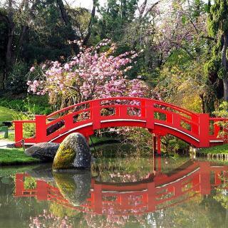 Décor pour votre tournage : le jardin japonais, petit pont rouge