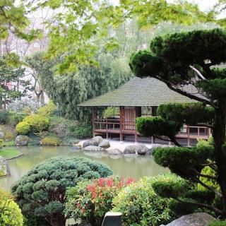 Décor pour votre tournage : jardin japonais et palais des Thés