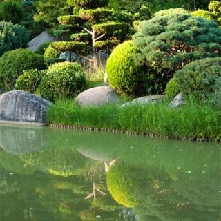 Décor pour votre tournage : le jardin japonais et son lac