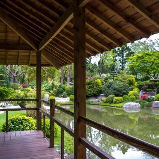 Décor pour votre tournage : le jardin japonais, vue sur le lac