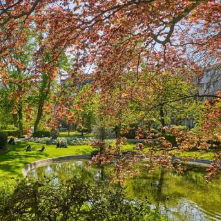 Décor pour votre tournage : le jardin Royal à Toulouse