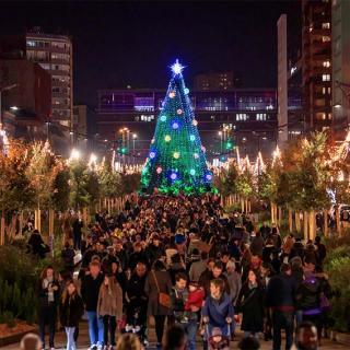 Décor pour votre tournage : arbre de Noël sur les allées Jean-Jaurès à Toulouse